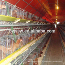 Layer Egg Chicken Cage / Poultry Farm House Design Frango Volquete de aves de capoeira