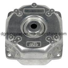 Produits de zinc moulés sous pression approuvés ISO9001-2008 (ZC9002) avec traitement de désignation avancée