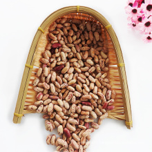 Hot Sale Organic Light Speckled Kidney Beans with Export Kidney Beans