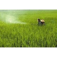 Herbicide Agrochimique Glyphosate 41% Ipa Salt SL