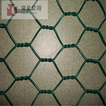 Hot dipped galvanized pvc coated hexagonal wire mesh