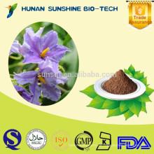 Natürliche Gesundheit ergänzt pflanzliche Heilmittel Scopalamin