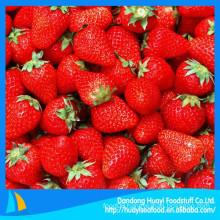 High quality bulk fresh frozen strawberry honey strawberry