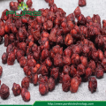 Nordried Schisandra Chinensis seco 2017 New Crop