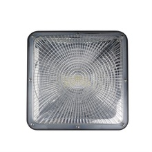 50W 75w optional led canopy light