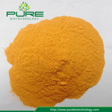 Freeze Dried Sea Buckthorn Extract with No Additives