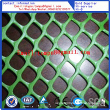 Plastic Flat Mesh Factory Direct Sale
