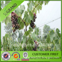 HDPE material with UV stabilizer orchards anti bird net