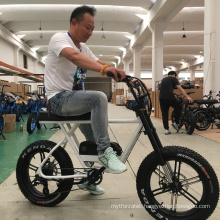 Popular Product High Quality Fat tire Cheap Electric mountain bike