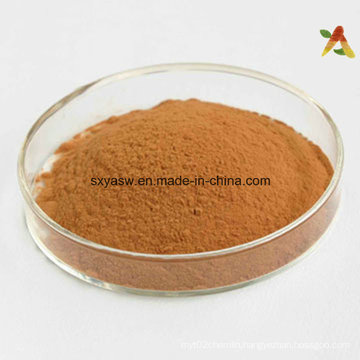Horsetail Extract 7% Silicic Acid