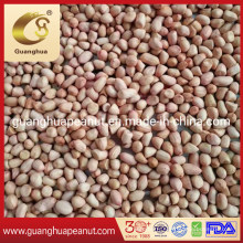 Export Quality Jumbo Peanut Kernels with Factory Price