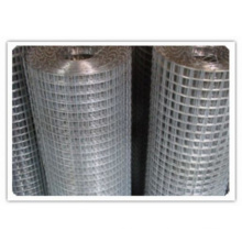Hot DIP Galvanized Welded Mesh/PVC Welded Wire Mesh