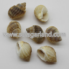 19-29MM joias pérolas soltas Shell Natural espiral