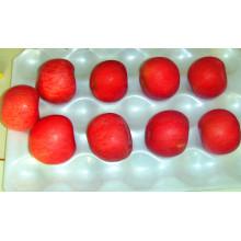 Exportar Fresh FUJI / Red Star Apple