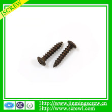 Cross Recessed Truss Head Self Tapping Screw
