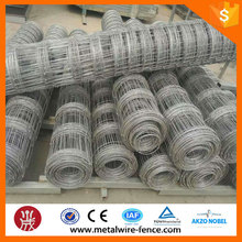 Hot dip galvanized grassland fence&cattle mesh fence