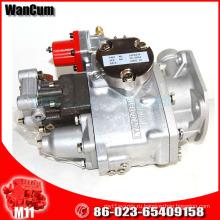 С N14 оригинальный CUMMINS часть двигателя Масляный насос 3075524