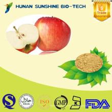 Puro 98% de flor de manzana / phloridina en polvo