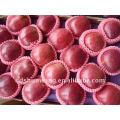 Red delicious huaniu Apfel