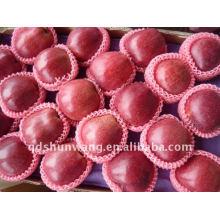 Red delicious manzana huaniu
