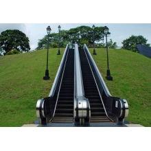 Алюминиевая лестница эскалатор с преобразователь