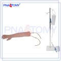 Modelo de brazo de entrenamiento IV humano PNT-TA001