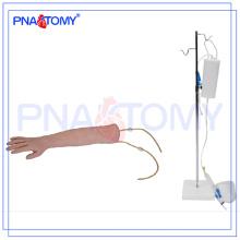 Modelo de braço de treinamento IV humano PNT-TA001