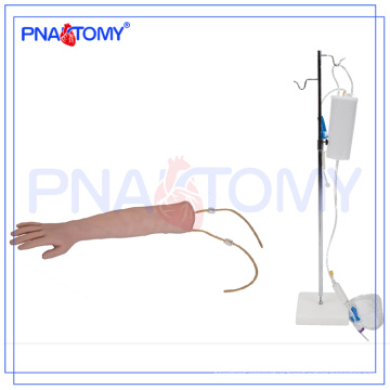 PNT-TA001 human IV Training Arm model