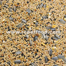 Premium food for pet birds  canary seed