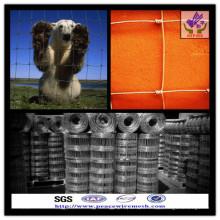 Bester Preis ISO9001 Viehzaun / Prairie Zaun