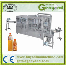 Complete Full Automatic Small Fruit Juice Factory