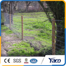Poultry Equipment Galvanized low Farm Fence, Field Fence For Animals