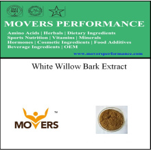 Экстракт растения с хорошей ценой - Экстракт коры белой ивы