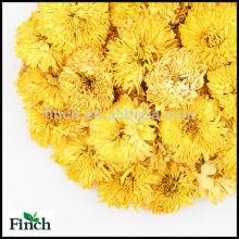 Chinois en gros jaune usine de thé de fines herbes de chrysanthème