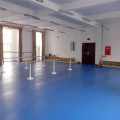 Enlio Multi-uso PVC Sports Flooring Dance Room