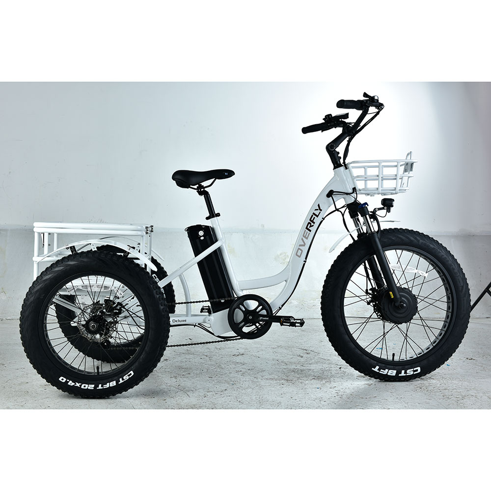 tricycle cargo ebike