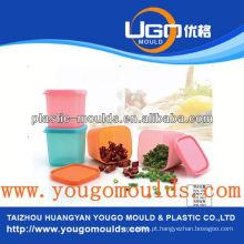 Zhejiang taizhou Huangyan fornecedor de moldes de recipientes de alimentos e 2013 caixa de ferramentas de injeção de plástico nova casa mouldyougo molde