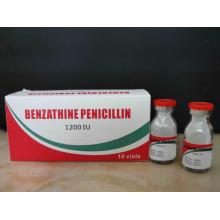 China Top 10 for Quinolone Antimicrobial Benzathine Benzylpenicillin for Injection Penicillin BP export to Belarus Manufacturer