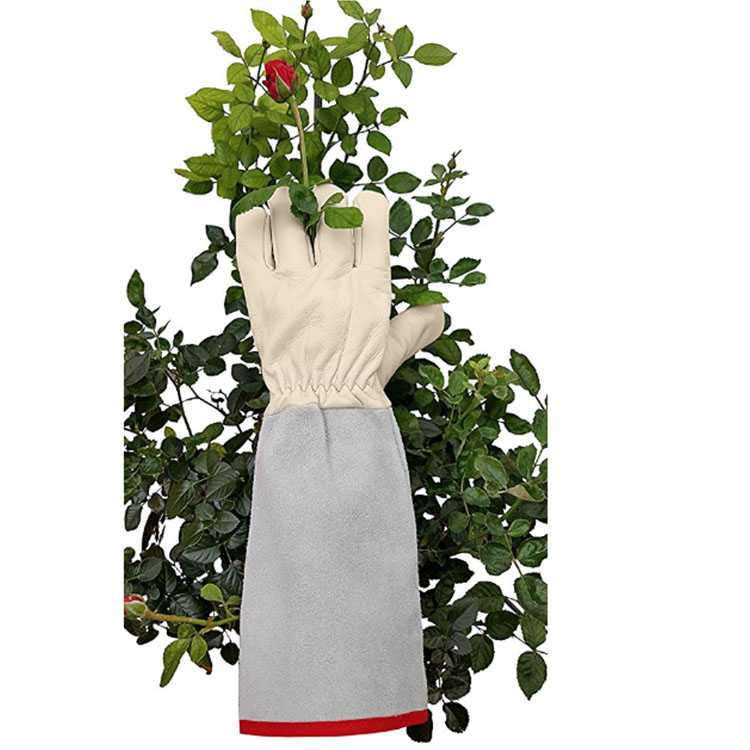 FLOWER Gardens Cleaning Gloves