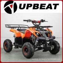 110cc Nutzfahrzeug Quad Bike ATV (50ccm / 70ccm / 90c / 110ccm / 125ccm)