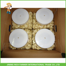 China billig Knoblauch / natürlichen Knoblauch / frischen Knoblauch / Lagerung geschält Knoblauch für Großhandel