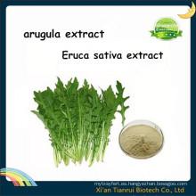 Extracto de rúcula, extracto de Eruca Sativa