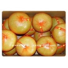 2011 Fresh Honey Pomelo