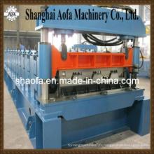 Machine de formage de rouleaux de plancher de meuble Bemo (AF-D025)
