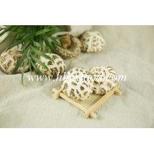 Cogumelo desidratado da flor, cogumelo de China Shiitake