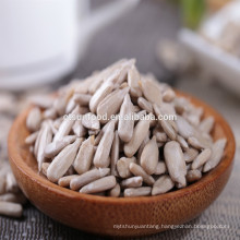 2019 crop Chinese black oil sunflower seeds for human consumption