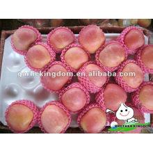 Frische Fuji Apfel Obst zum Verkauf