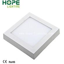 Berufslieferant 6W / 12W / 18W Oberfläche angebrachte LED-Platte