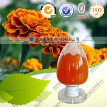Marigold Flower Extract Powder Cws Lutein para ojos