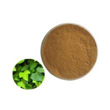 Ivy Leaf Powder Extract